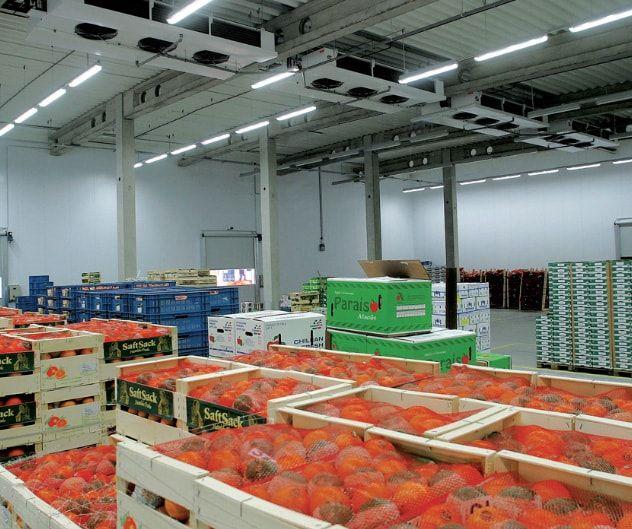 Холодильный склад компании Русский Холод